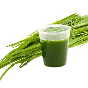 Wheatgrass_Drink__Wheatgrass